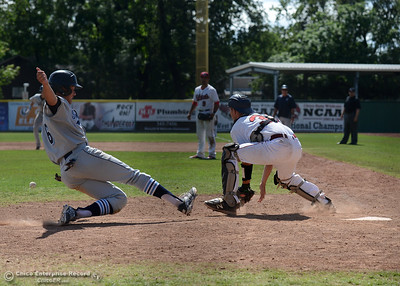 Bryant Cid scores for Sonoma State before Chico State catcher Cody Bistline  gets the ball as Chico State plays Sonoma State on Saturday, April 23, 2016, at Nettleton Stadium in Chico, California. (Dan Reidel -- Enterprise-Record)
