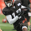 160809 Browns Training Camp-3