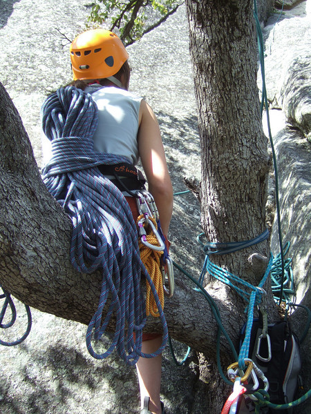 jana on a most excellent belay tree