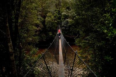 Swing bridge fun