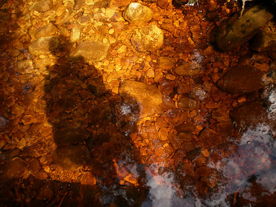 Tannin stained river