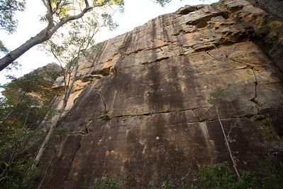 Liquidity Wall at Hylands - 25+m of face climbing