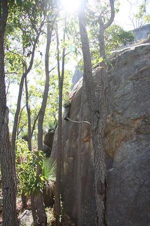 Llama rocks 19-02-2006