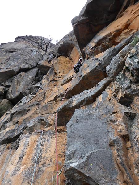 Amber, Last Rites, Mt Rosea.