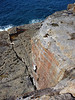 Patrick's new route, Snapper left wall, Town Cliffs, Point Perpendicular.