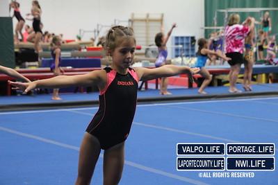 Oylmpic_Gymnastics (4)