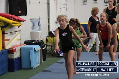 Oylmpic_Gymnastics (3)