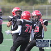 Portage_Pop_Warner_PeeWee_2012 (46)