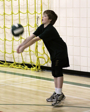 WMEMS Volleyball 2010