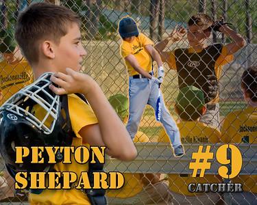 Collage- Peyton Shepard
