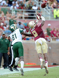 NCAA Football: South Florida at Florida State