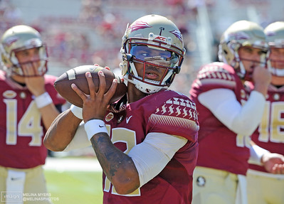 NCAA Football: North Carolina at Florida State
