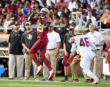 NCAA Football: Florida State Spring Game