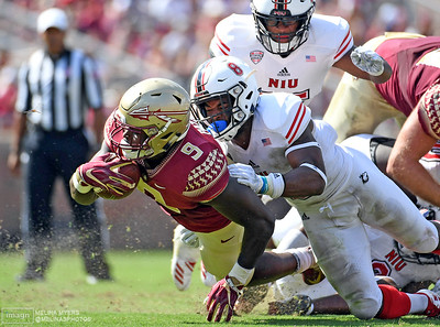 FSU vs. NIU, 2018, Tallahassee FL. Photo: Melina Myers/ USATSI