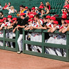 Louisville cheers from the dugout during the Cardinals' game against Northern Kentucky at Slugger Field on Wednesday. Staff Photo By Josh Hicks
