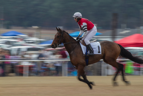 Colonial Cup - 2013