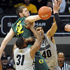 "Ben Carter (32) of Oregon and Josh Scott of Colorado battle for the ball during the first half of the March 7, 2013 game in Boulder.<br /> For more photos of the game, go to  <a href=""http://www.dailycamera.com"">http://www.dailycamera.com</a>.<br /> Cliff Grassmick / March 7, 2013"