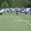 Andrew Luck drops back to pass