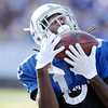 Don Knight | The Herald Bulletin<br /> Wide receiver T.Y. Hilton grabs a pass over his shoulder in the corner of the endzone during Colts Camp at Anderson University on Tuesday.