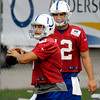 Colts rookie quarterback Chandler Harnish gets a smile out of fellow rookie Andrew Luck during drills Sunday.