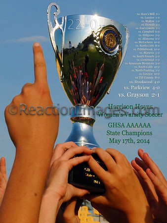 Trophy 1 (18 x 24)