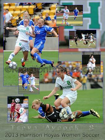 Soccer 1 (24 x 36)