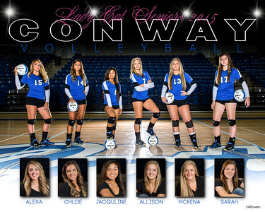 Conway Volleyball 2014