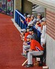 Cortland Crush players watching from the Dugout in a game against the Syracuse Junior Chiefs in Syracuse, New York on Friday June 19, 2015. Cortland won 7-5.