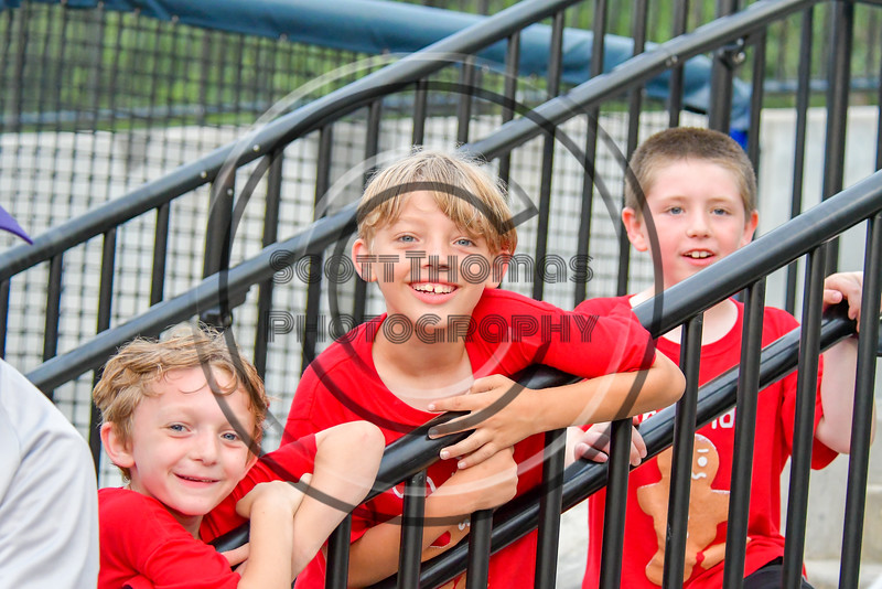 Young Cortland Crush fans at OCC Turf Field in Syracuse, New York on Friday, July 8, 2016. Cortland won 10-4.