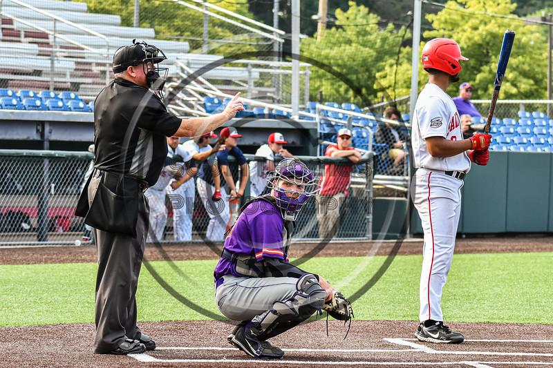 Cortland Crush Catcher Matthew Ward (20) behind Home plate against the Syracuse Salt Cats in New York Collegiate Baseball League action on Leo Pinckney Field at Falcon Park in Auburn, New York on Sunday, July 18, 2021. Cortland won 4-3.