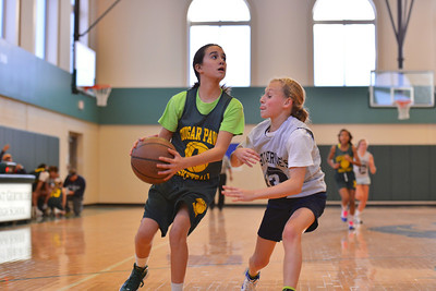 Cougar Paws Basketball 2012