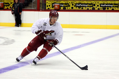 Coyotes Rookie Camp 2013