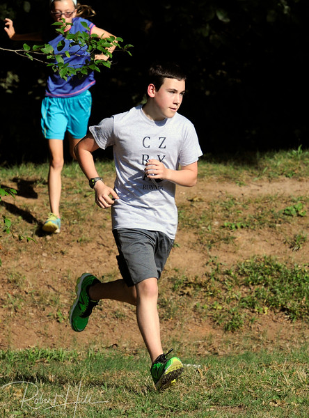 2015 Crazy Running Summer Speedsters