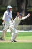 "Club legend, Greg ""Mo"" Matthews throwing his all into an appeal for a wicket. Nice beard Mo, looks like mine!"