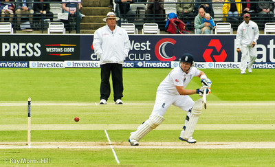 Ian Bell on the way to 63 not out