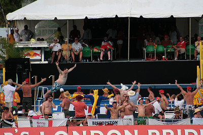 Barbados test match 2009 - the party stand. Not really a cricket shot, I know, but they all seemed to be having fun. Especially Dangermouse.
