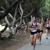 Cross Country 2008 : 2 galleries with 202 photos
