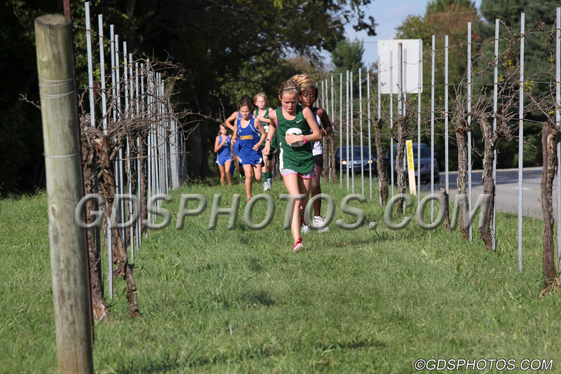 MS COED CROS COUNTRY10042012124_1