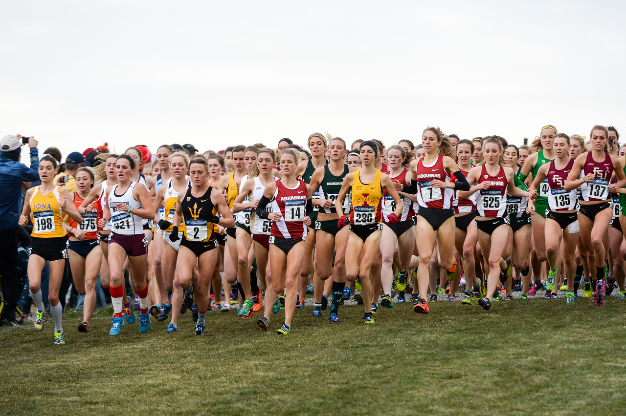 2014 Cross Country National Championship