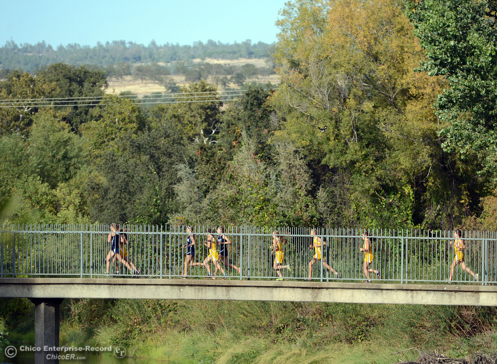 . Chico High against Pleasant Valley High varsity girls cross country race at Hooker Oak Wednesday, October 2, 2013, in Chico, Calif.  (Jason Halley/Chico Enterprise-Record)