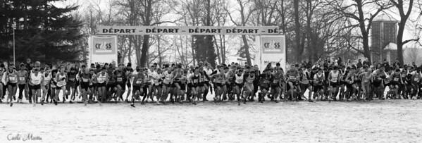 Championnat d'Ile de France de Cross, Les Mureaux (2012)