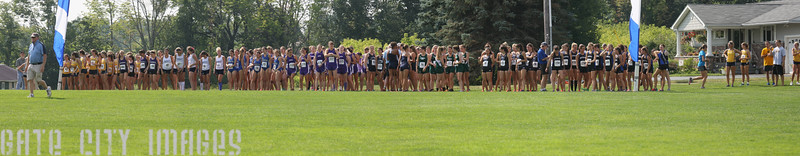 UNE XC at St Anselm