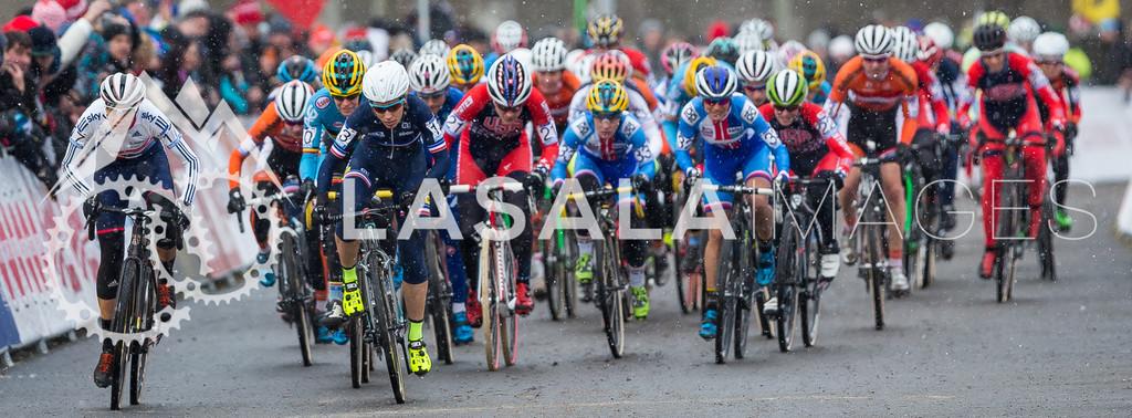 2015 CX Races