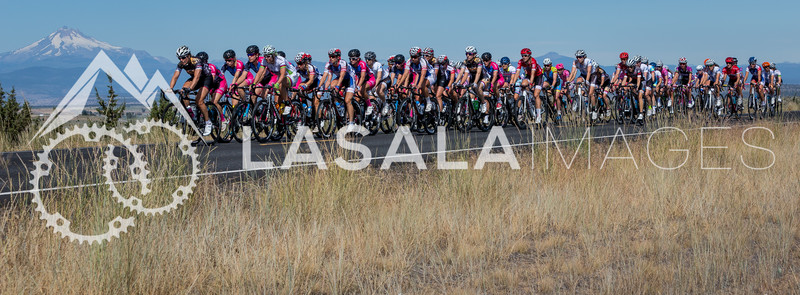 2015 Road Cycling Races