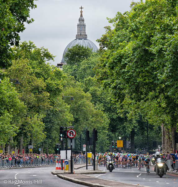 St Paul's Cathedral rises majestically above the Embankment as the peloton heads towards Whitehall