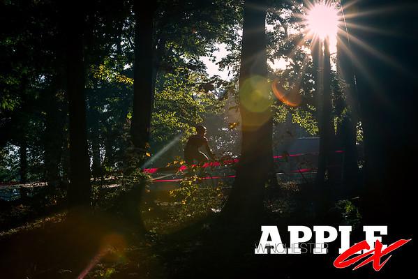Winchester AppleCross 14