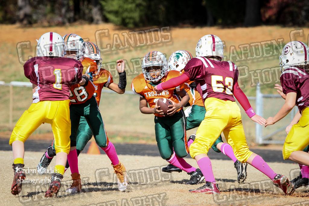 Cooleemee Varsity vs Pinebrook-Championship Day 11-8-14-021