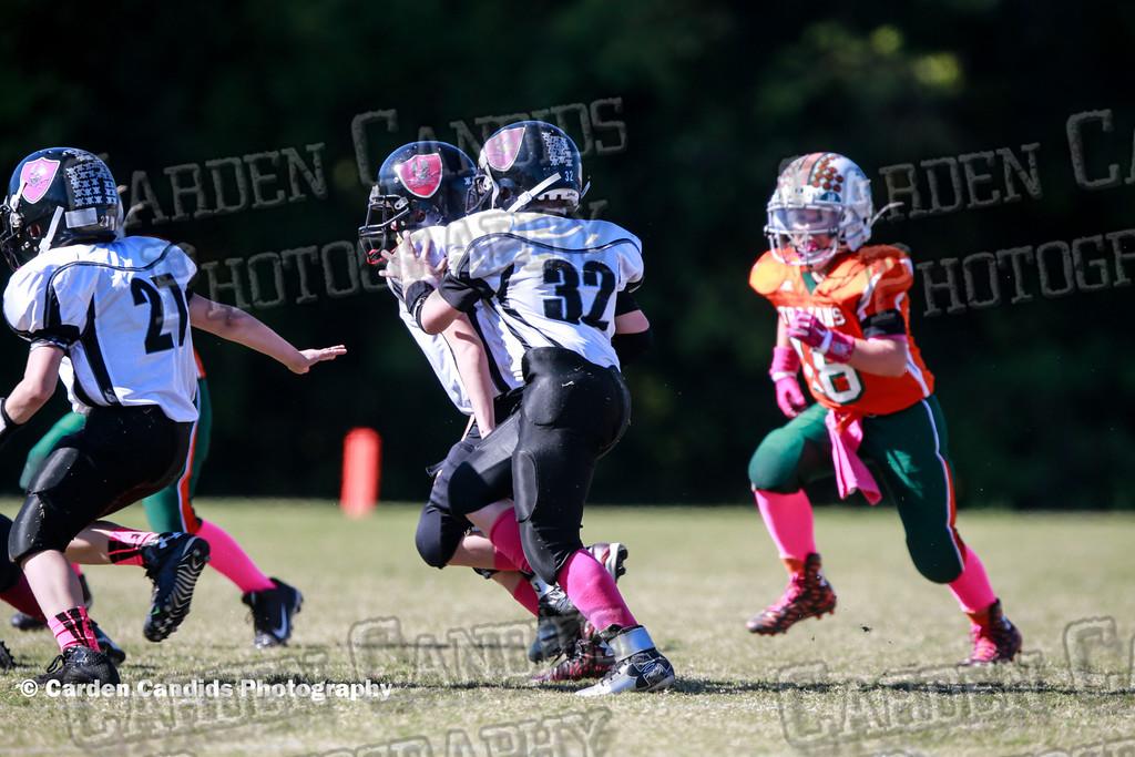 WRD JV vs Pinebrook 10-17-15-036