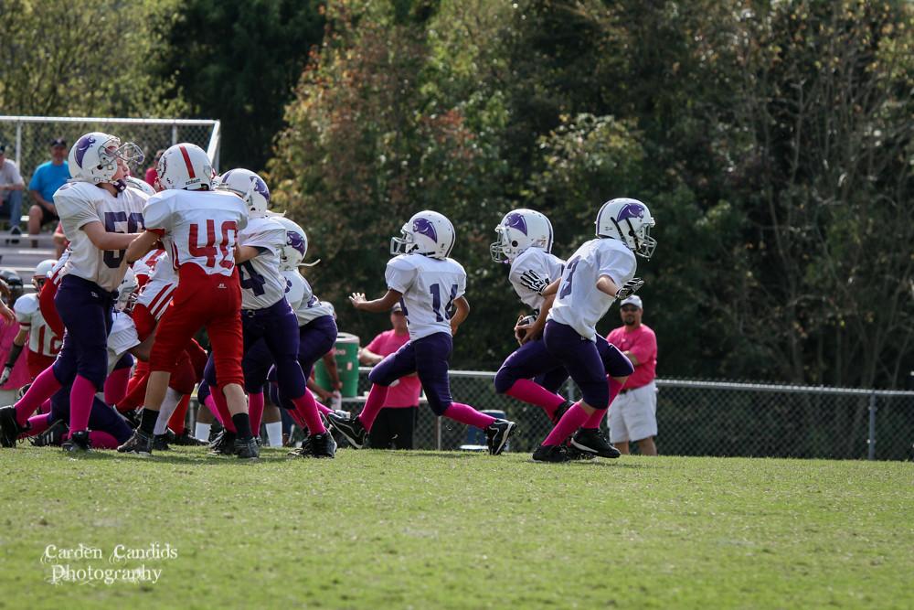 Cougars JV vs Bulldogs JV 10-6-015