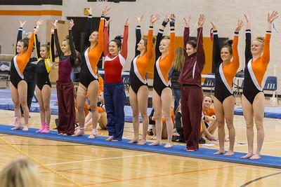 DHS Gymnastics 2016
